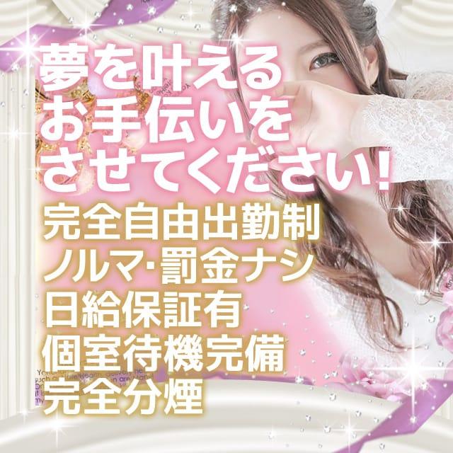 夢を叶えるお手伝いをさせてください!|やんちゃな子猫堂山店の求人ブログ