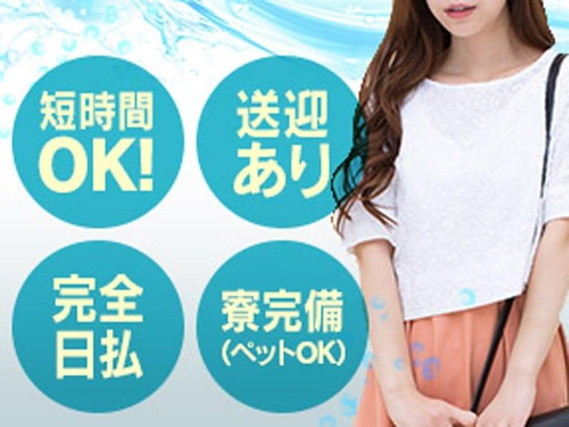 新店舗拡大の為、女の子大募集!|DIE-SELの求人ブログ