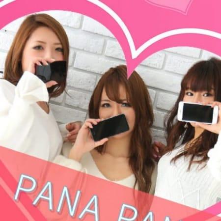 PANA PANAアルバム   PANA PANA(名古屋)