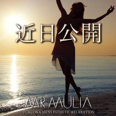 ちひろ | MR.MULIA(ミスタムリア)(福岡市・博多)