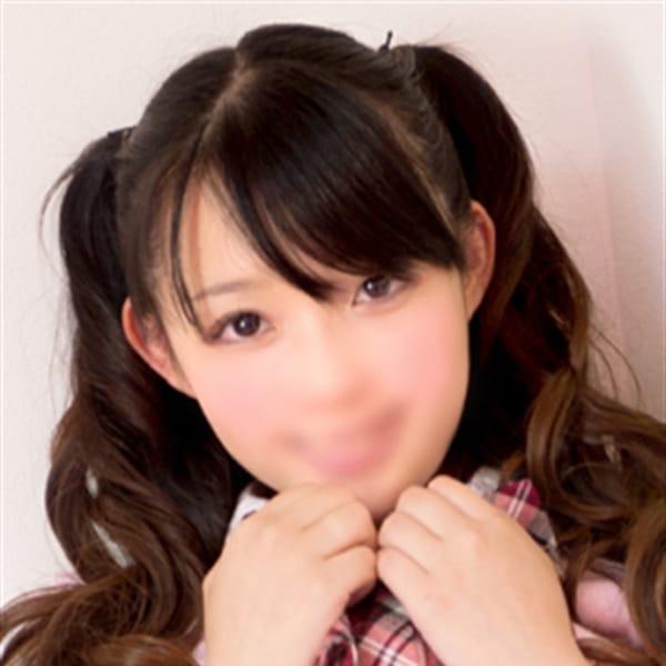 ゆいゆい【レア登校♡見逃せない】 | 子猫カフェ博多店(福岡市・博多)