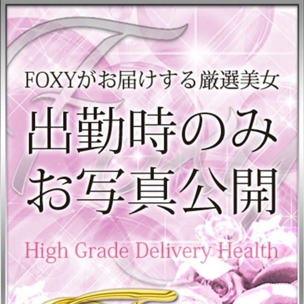 クロエ【GOLD VIP】 | 神戸FOXY(神戸・三宮)