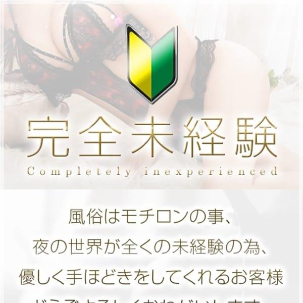 こまき【~プレミアムシンデレラ~】 | ギャルズネットワーク神戸(神戸・三宮)