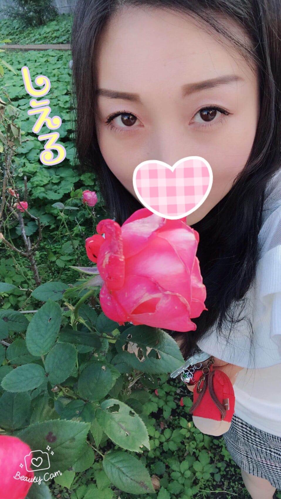 「お花」11/03(金) 17:30 | しえるの写メ・風俗動画