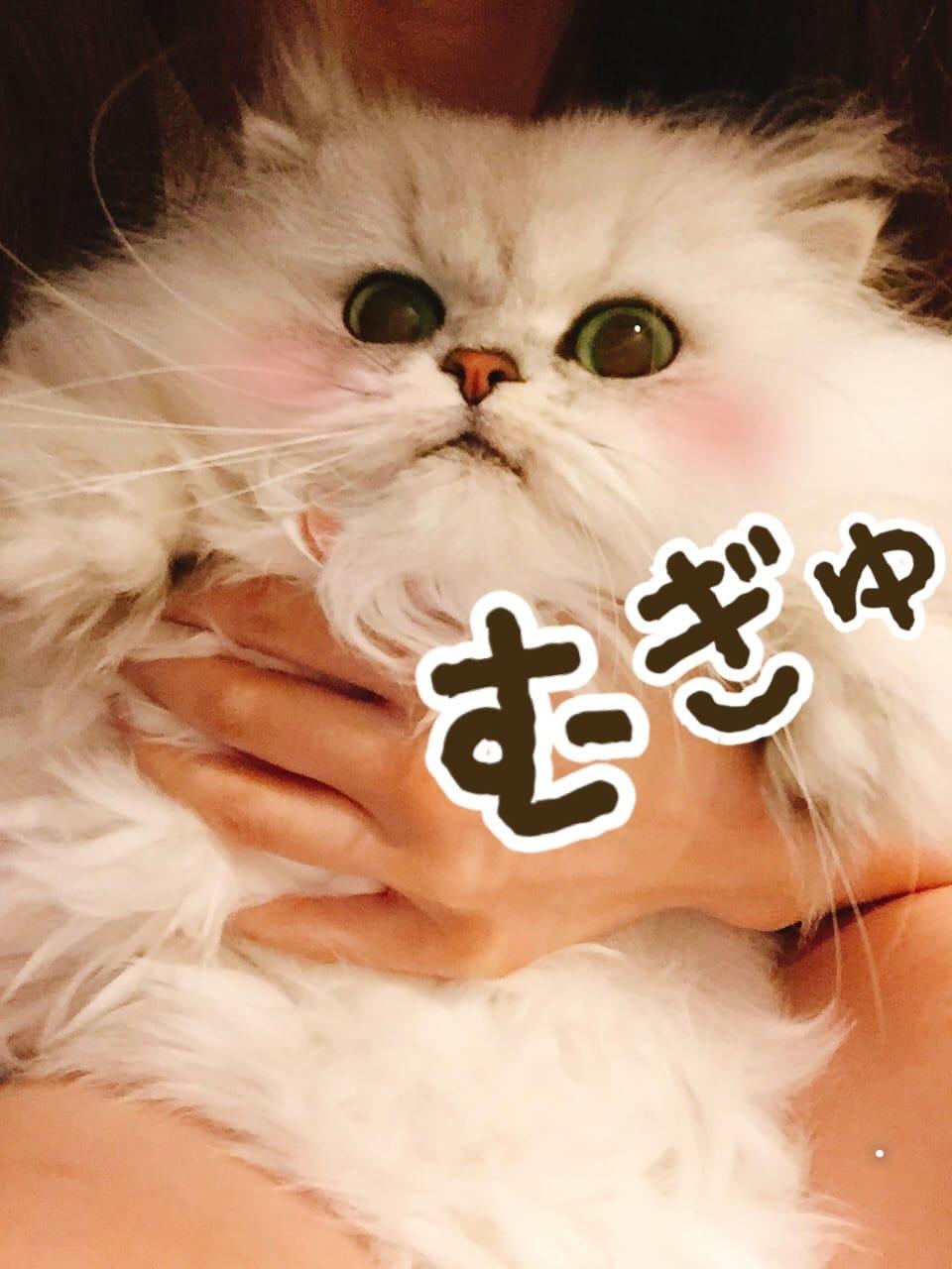 りり「再起動したらUSB反映しますた!」11/08(水) 06:30 | りりの写メ・風俗動画