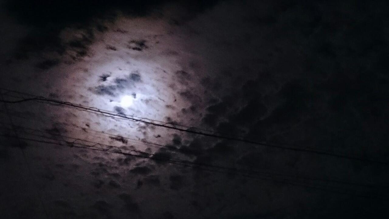 「月が綺麗でした」11/08(水) 22:38   実佳(みか)の写メ・風俗動画