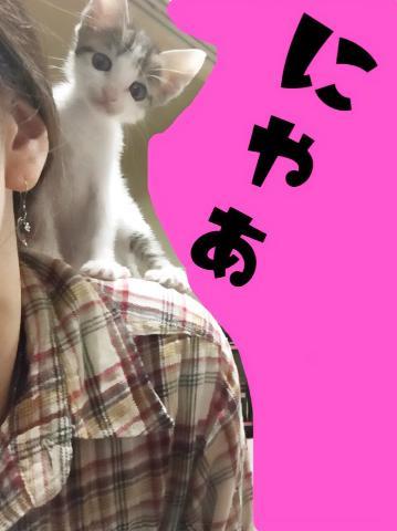 「?うちの子?」10/04(火) 22:37 | 神崎 ありさの写メ・風俗動画