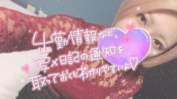 「ありがとー!」11/23日(月) 01:43   ナナの写メ・風俗動画