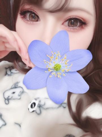 「どあっぷ」11/23(月) 09:00 | ヘブン【顔出動画撮影解禁】の写メ・風俗動画
