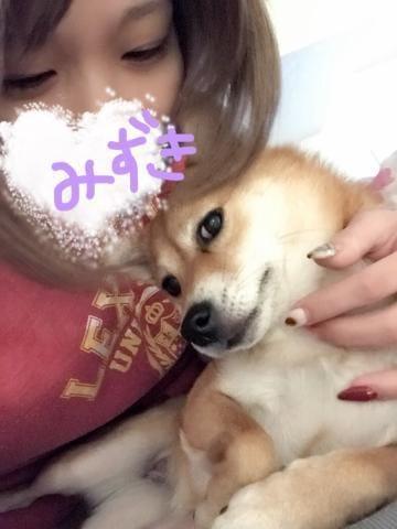 みずき「みずき~(^ω^)」11/14(火) 18:35 | みずきの写メ・風俗動画