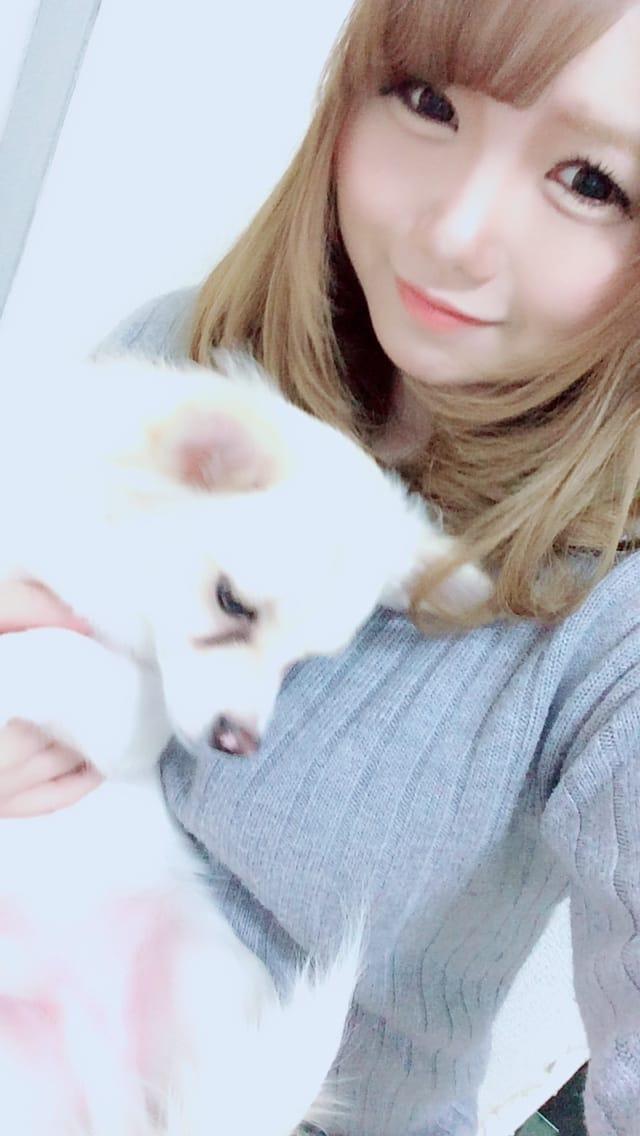 「お時間変更?」11/19日(日) 23:52 | アリスの写メ・風俗動画