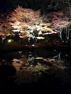 アイカ「あいかですー」11/20(月) 21:44 | アイカの写メ・風俗動画