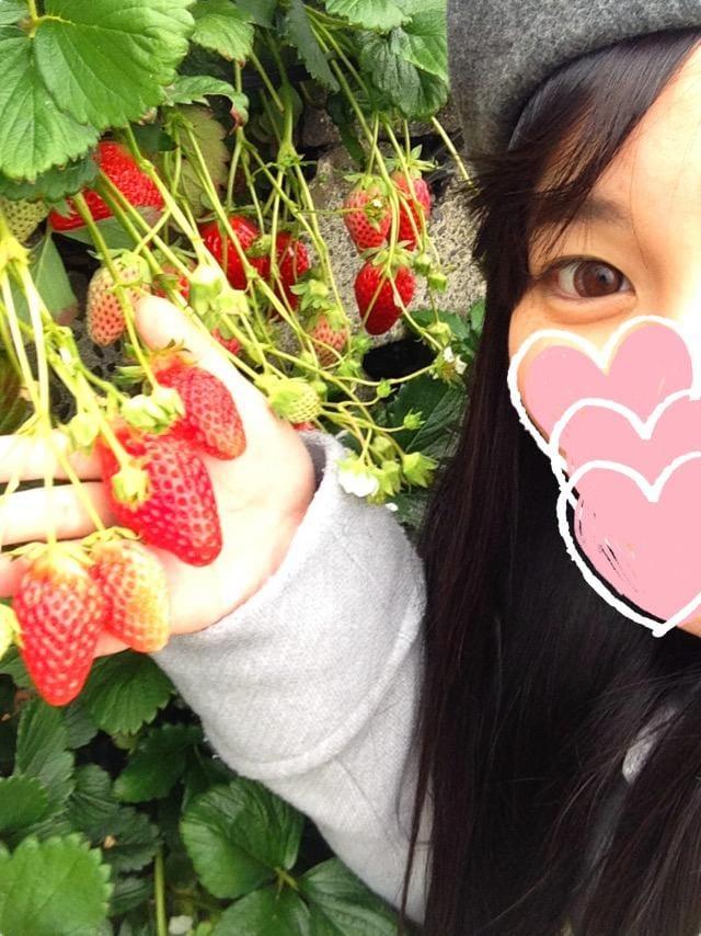 「ココアでポカポカ〜」11/23(木) 07:47 | 安西まりえの写メ・風俗動画