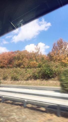 もね「やっと秋?笑笑」11/23(木) 11:38 | もねの写メ・風俗動画