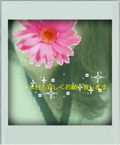「*出勤します*」11/25(土) 10:36 | 玲子(れいこ)の写メ・風俗動画