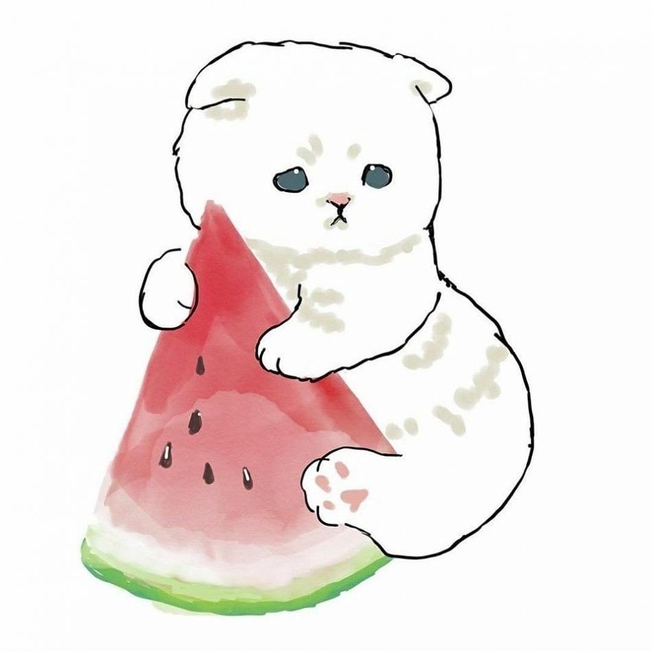 ありさ☆新入店「お疲れ様!」01/18(月) 23:05   ありさ☆新入店の写メ・風俗動画