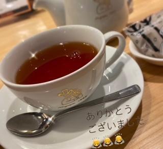 「お礼//次回出勤予定」01/19(火) 03:04   さいかの写メ・風俗動画