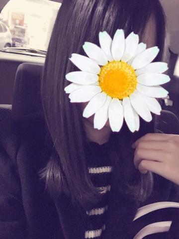 すみれ「こんばんは!」11/29(水) 20:38 | すみれの写メ・風俗動画