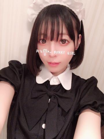 「メイドは好き?」01/27(水) 23:01 | おとの写メ・風俗動画