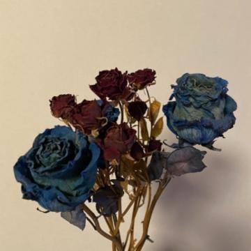 「青薔薇」02/10(水) 15:19   ヒカルの写メ・風俗動画