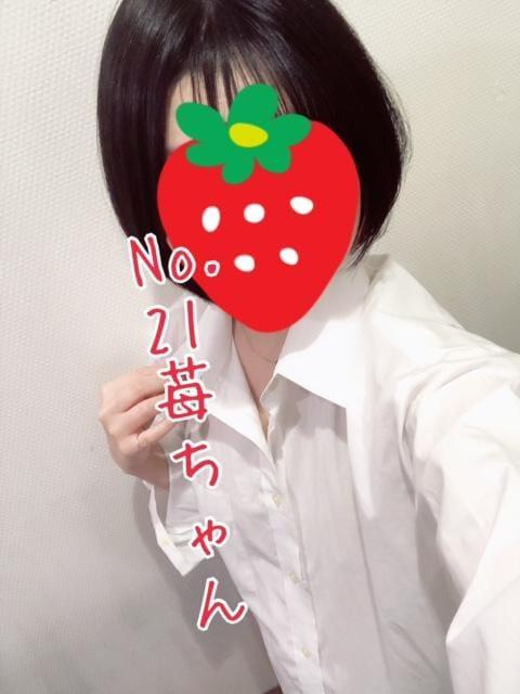 「No.21苺だよ‼️ほんとにほんとにありがとうございます(*´ω`*)」03/01(月) 23:03   苺の写メ・風俗動画