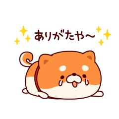 「ありがとう(_ _*)」03/06日(土) 11:36 | みおの写メ・風俗動画