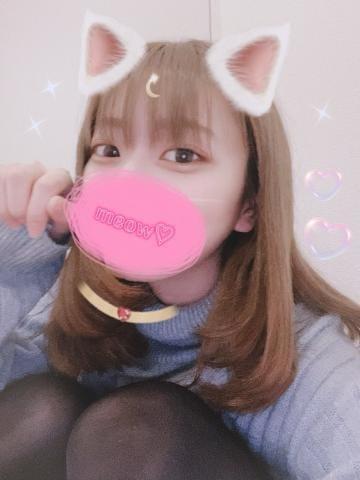 「にゃん?」03/07(日) 11:23   しゅりの写メ・風俗動画