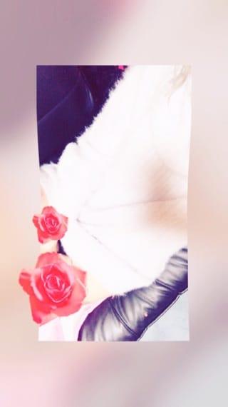 桐谷(きりたに)「センキューです!」12/11(月) 02:44 | 桐谷(きりたに)の写メ・風俗動画
