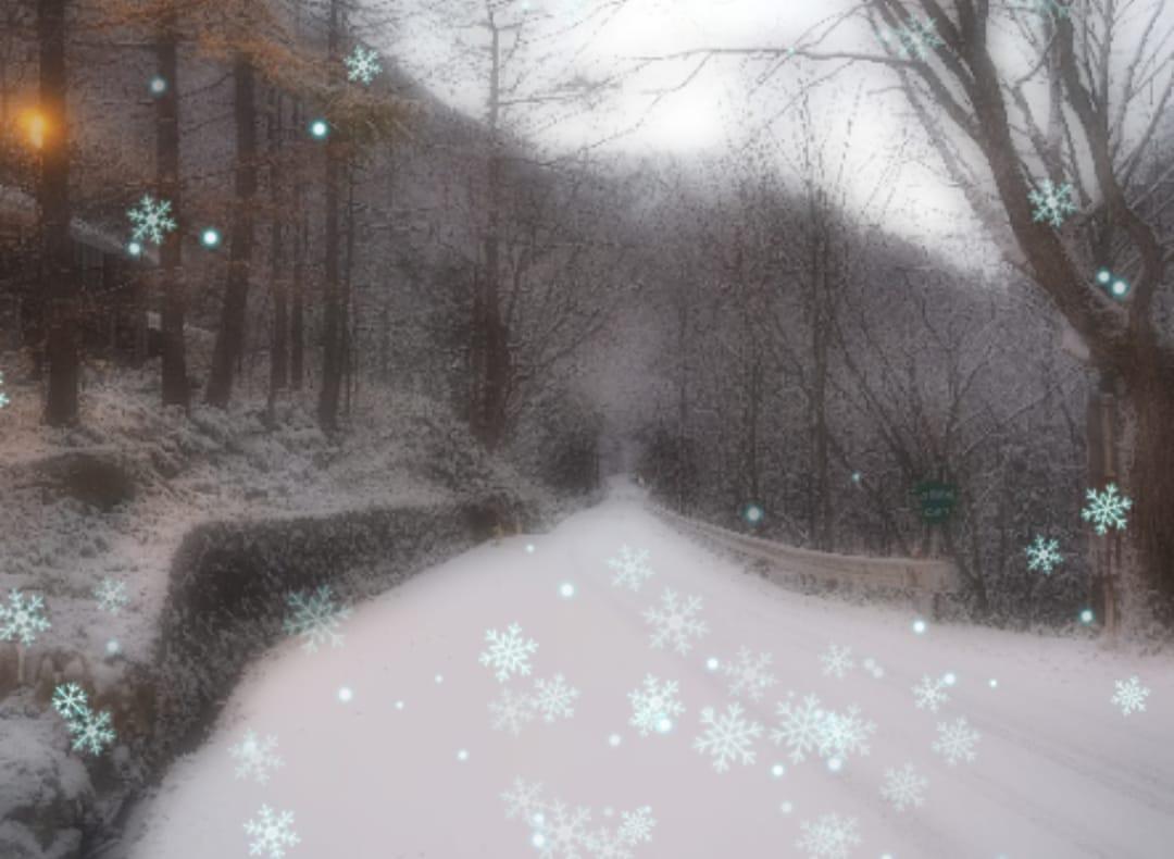 「おはようございます(*^-^)」12/12(火) 06:50 | 小野寺せなの写メ・風俗動画