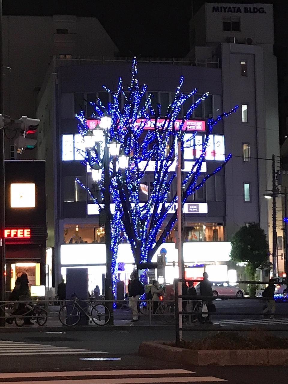 月島(つきしま)「今晩は(*^^*)」12/13(水) 23:10 | 月島(つきしま)の写メ・風俗動画