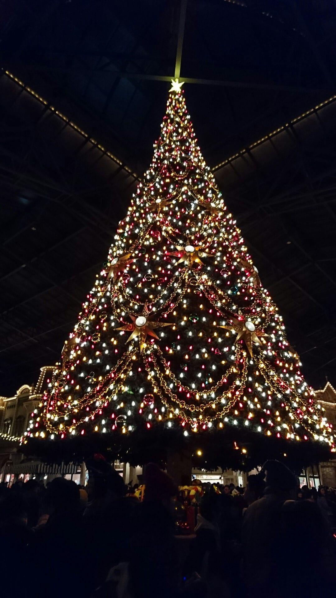 「クリスマスー!!!」12/14(木) 21:24 | あすかの写メ・風俗動画