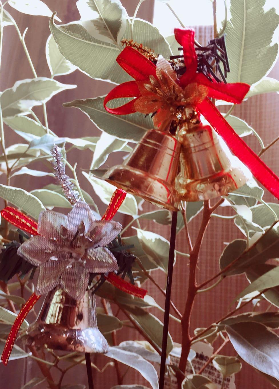 加藤‐かとう‐「そろそろ ですネ!^ ^^ ^」12/15(金) 11:41   加藤‐かとう‐の写メ・風俗動画