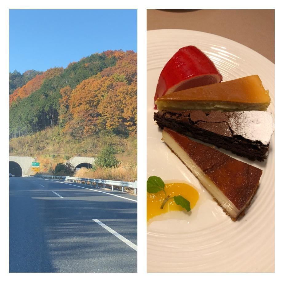 「小旅行」12/16(土) 22:11   ちかこの写メ・風俗動画