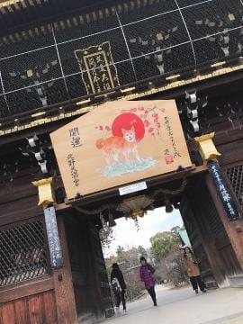 りさ「risa」12/17(日) 22:39 | りさの写メ・風俗動画