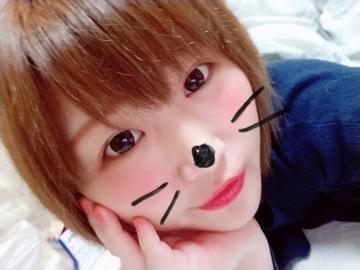 「ありがとう?」12/17(日) 23:44   あんず★未経験・ロリ可愛い系の写メ・風俗動画
