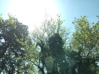 「リフレ〜ッシュ❣️」04/23(金) 12:43 | 淡海の写メ・風俗動画