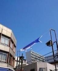 「昨日撮った写真」05/05日(水) 14:59   ろざりおの写メ・風俗動画