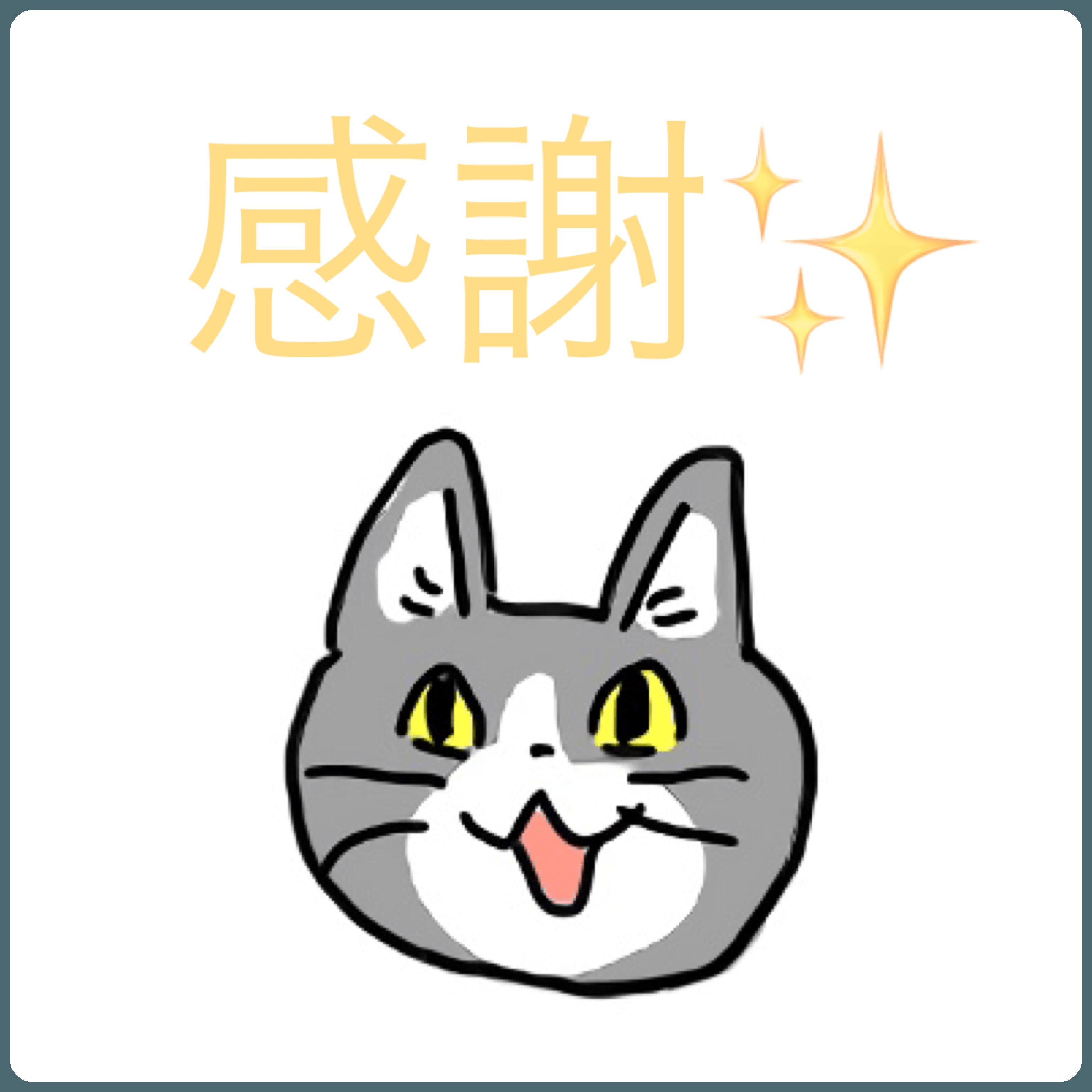 「どうも」05/07(金) 08:55 | イオリの写メ・風俗動画