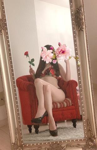 「来週?」05/10(月) 00:23   Aihime-愛姫-の写メ・風俗動画
