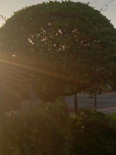 「みなさま」01/05(金) 08:30 | かなみの写メ・風俗動画