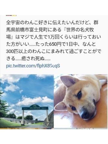 「いま行きたい場所」06/15(火) 12:02 | 冬乃かおりの写メ