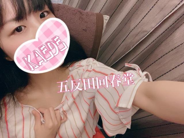楓-かえで-「す!て!き!」06/15(火) 22:04   楓-かえで-の写メ
