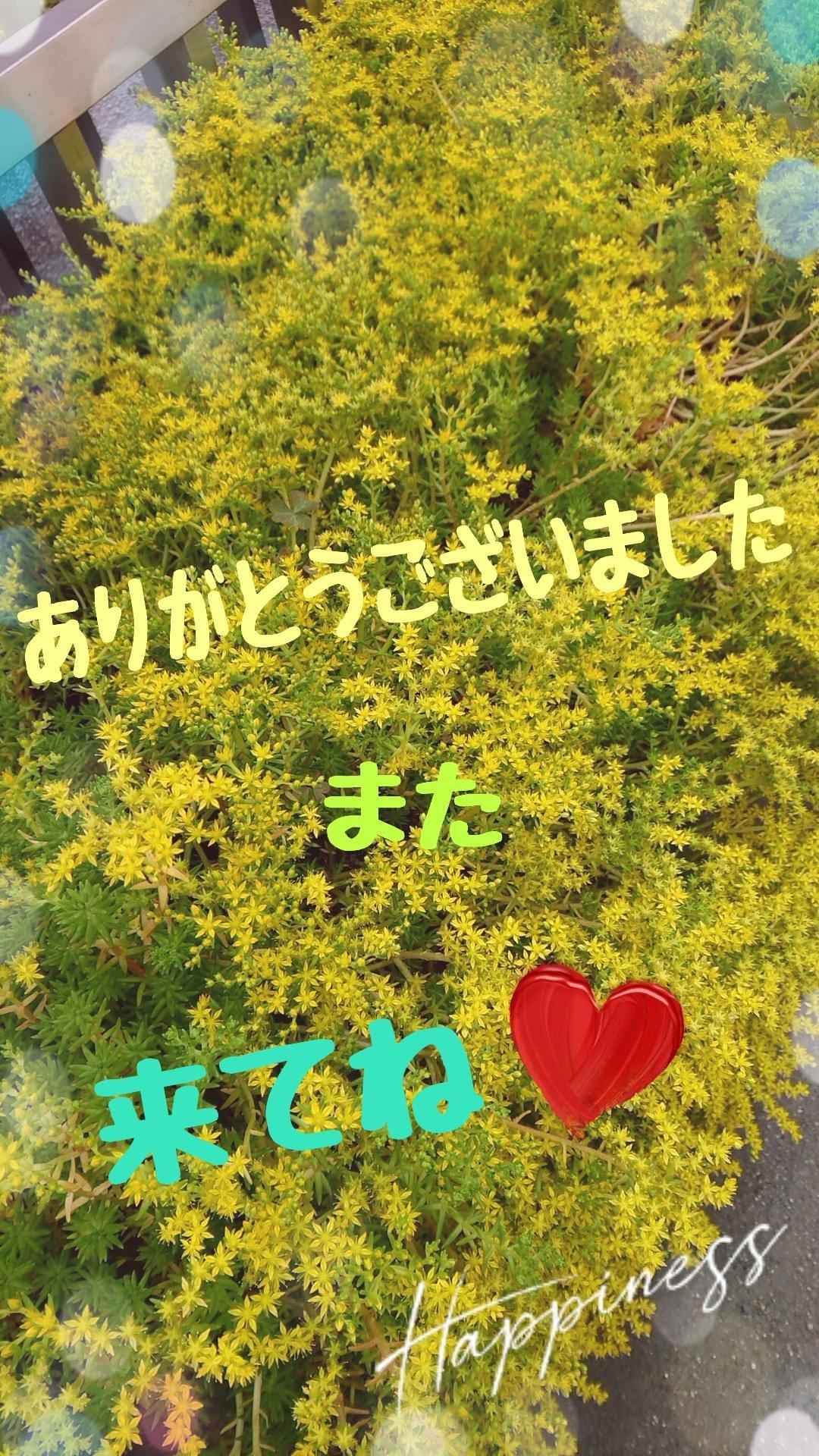 「☆お礼(_ _)☆*°☆*°」06/16(水) 21:58 | あいの写メ