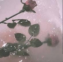 「ごめんなさい(´;??;`)、、」06/19日(土) 15:09   もも※姉系ご奉仕M美女の写メ・風俗動画