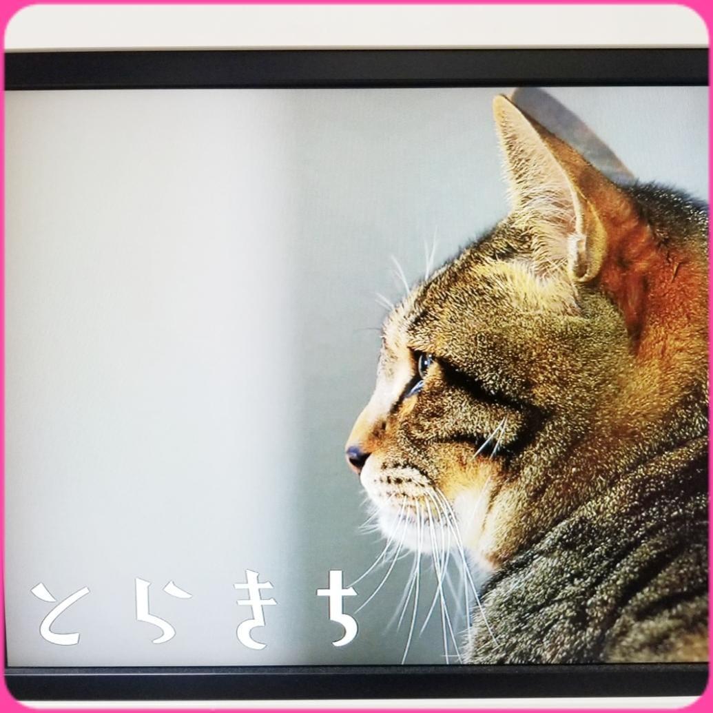 「☆さわりたい☆」06/22(火) 22:37 | 宝生杏奈の写メ