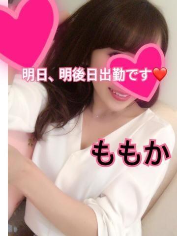 「[お題]from:ミニメタボさん」01/12(金) 21:27 | ももかの写メ・風俗動画