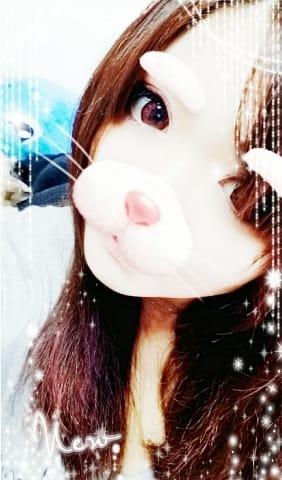 「おはようございます( *´?`*)」01/16(火) 08:32 | りほ※おっとり天使の写メ・風俗動画