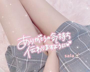 「」07/24(土) 11:51   サラの写メ
