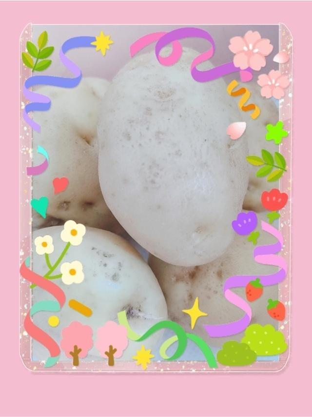 「じゃがいも」07/24(土) 13:08   松岡えり【OL委員会】の写メ
