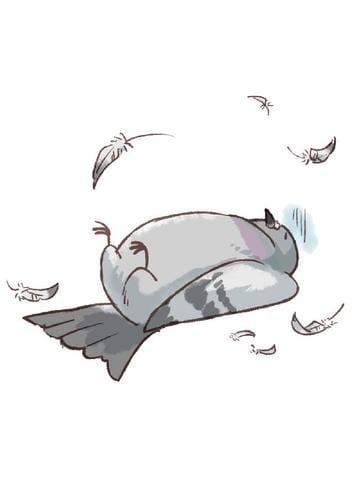 「【アニマル診断】今日の運勢ランキング」01/18(木) 23:22   ルルアの写メ・風俗動画